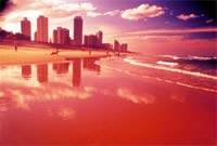 Surfers Paradise - Main Beach